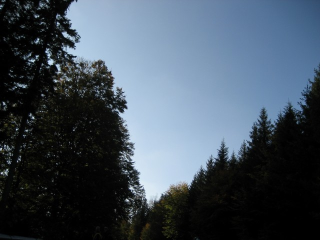 Bild 536 (Small)
