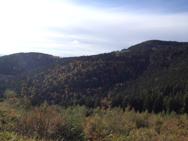 2012-10-15T09-44-17_15 (Small)